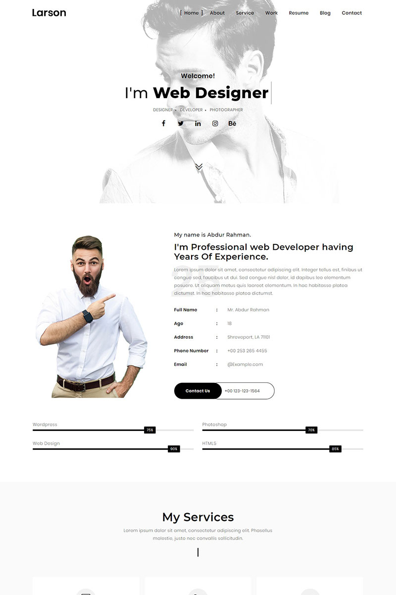 Larson Minimal Personalportfolio Template Landing Page Template