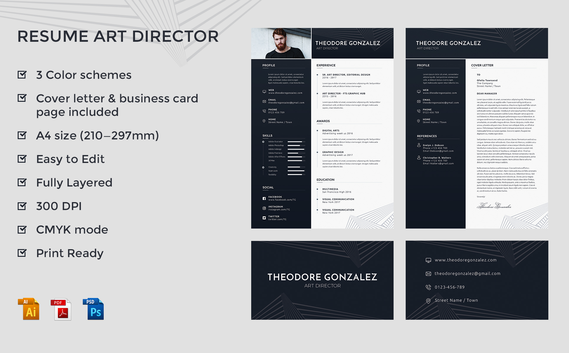 theodore gonzalez art director resume template 65437