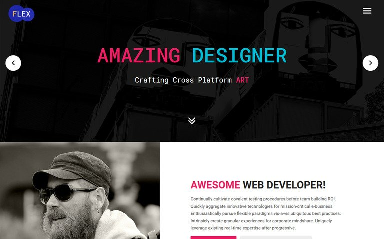 flex portfolio resume website template 65538