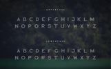 Blogoodf Font