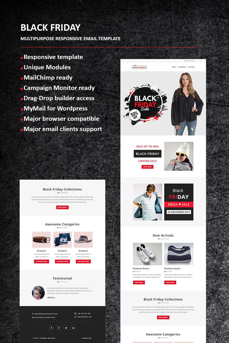 Black Friday - Email Newsletter Template #65984