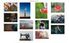Photo Gallery WordPress Plugin Big Screenshot