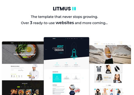 Litmus - Creative Multipurpose