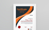 Insurance Company Certificate Template