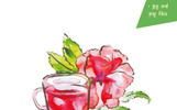Watercolor Tea Collection Vector Set Illustration