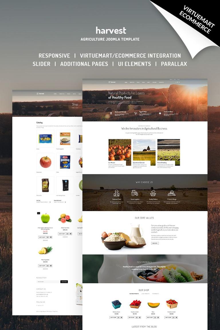 Joomla Vorlage #66783 für Fruit
