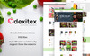 Dexitex - Grocery Market PrestaShop Theme Big Screenshot