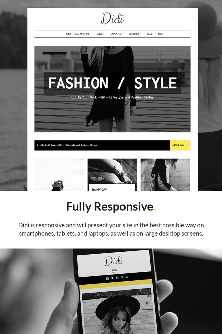 Didi - Fashion WordPress Theme WordPress Theme Big Screenshot