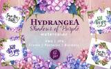 Hydrangea PNG Watercolor Flower Set Bundle