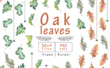 Oak Leaves PNG Watercolor Set Illustration