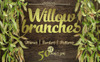 Willow Branches - JPG Watercolor Illustration Big Screenshot
