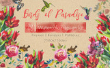 Birds of Paradise JPG Watercolor Bundle