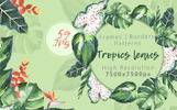 Tropics Leaves JPG Watercolor Set Bundle
