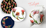 Colorful Tulips PNG Watercolor Set Bundle