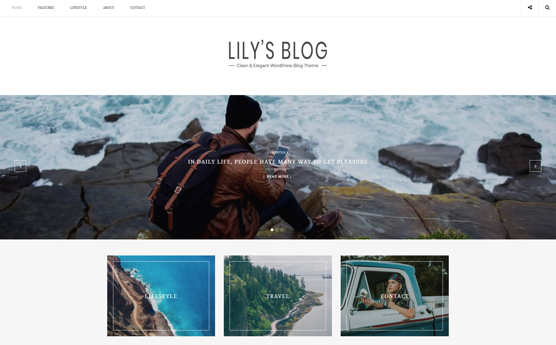 e3d8bf444dbed5 Lily - Clean & Elegant Blog WordPress Theme Big Screenshot · Zoom In Live  Demo