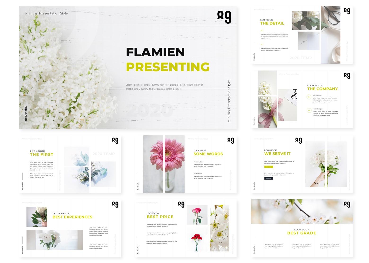 Flamien | PowerPoint Template