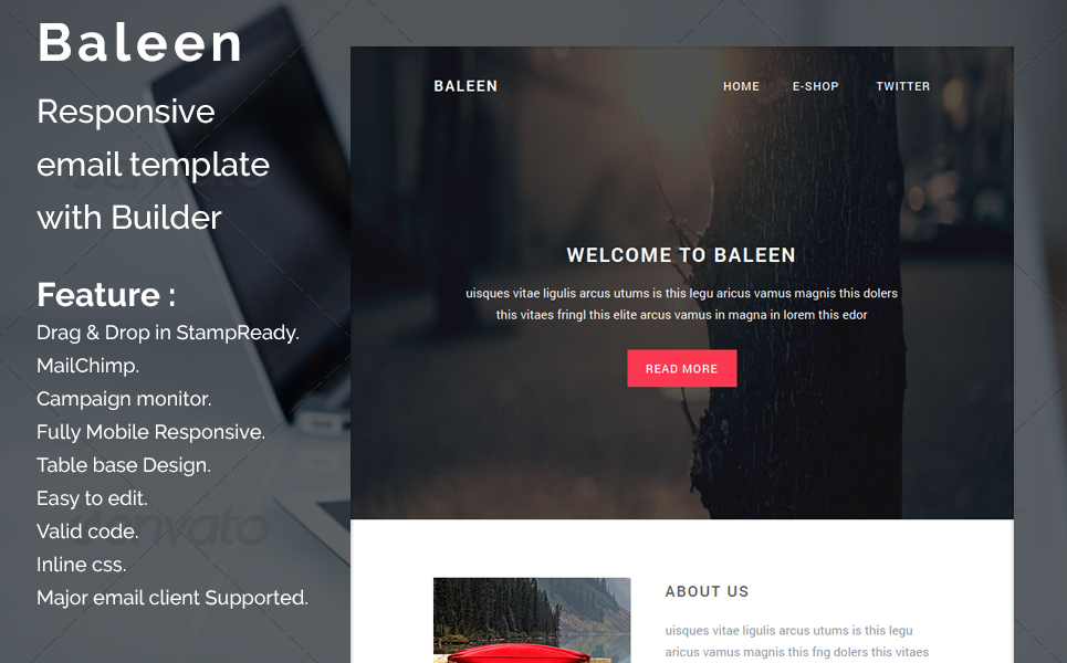 Baleen Responsive Email Template Newsletter Template 65043