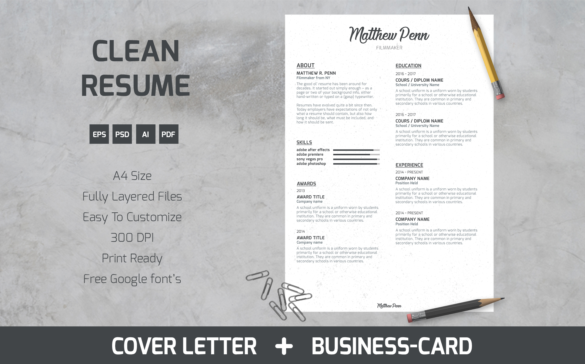 Matthew Penn - Filmmaker Resume Template #64897